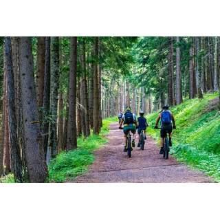 Förhandsboka cykel